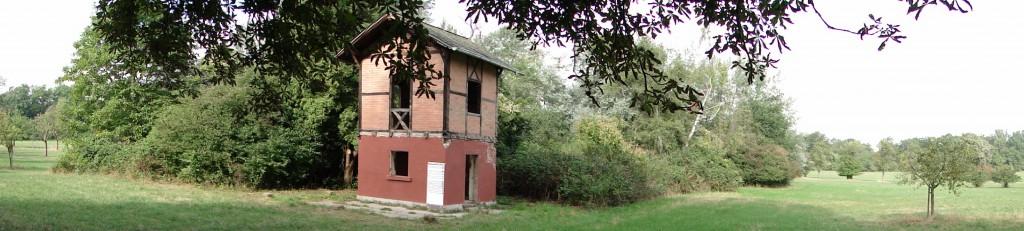 Restbestand eines einst bewirtschafteten Areals, DSC08883