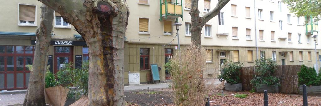Mannheimer Platzgestaltung ...