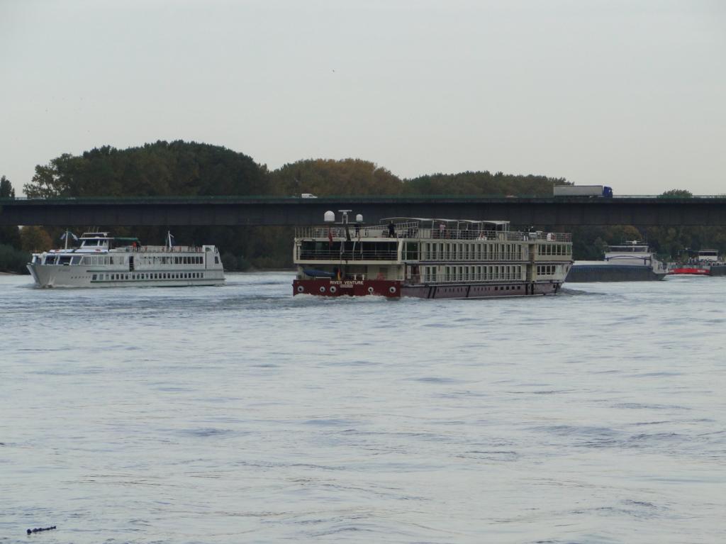Vater Rhein, im Hintergrund die Theodor-Heuss-Brücke, die Baden-Württemberg und Rheinland-Pfalz verbindet
