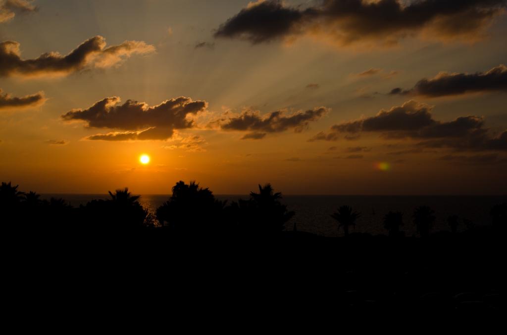 Sonne über Nahost...