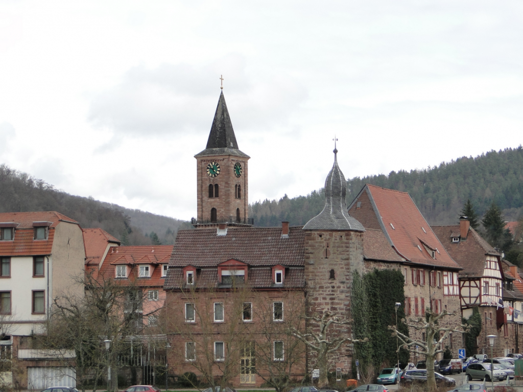 Blick auf den Turm der Michaeliskirche vom Neckarweg, den wir gleich entlang radeln werden, Richtung Hirschhorn / Ersheim...