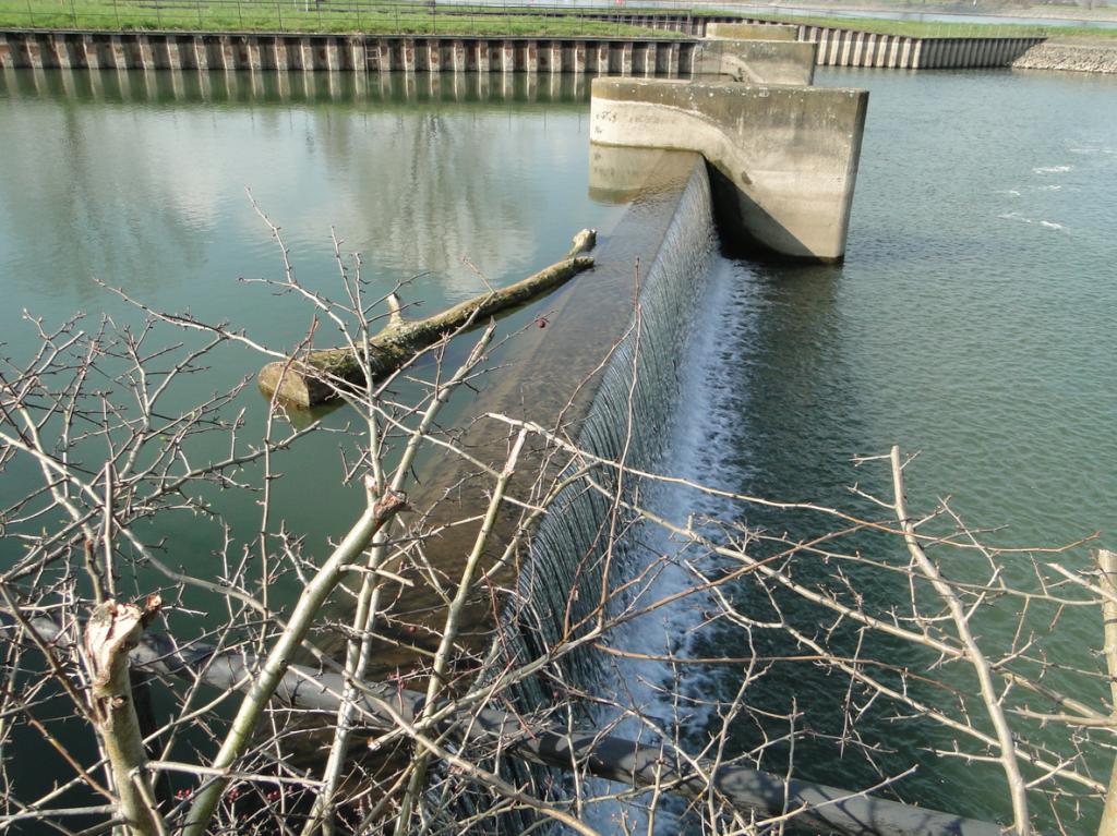 Reaktor-Kühlwasser, im Hintergrund Vater Rhein