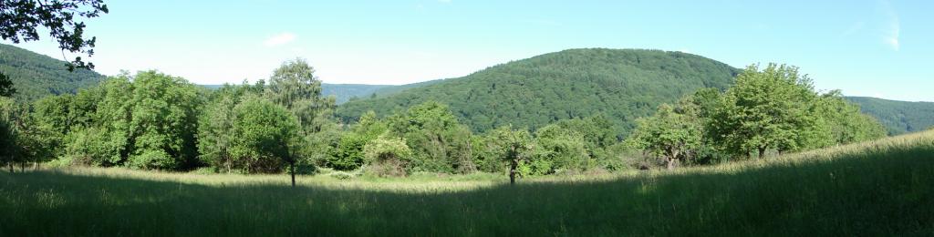 Gelobtes Land Odenwald