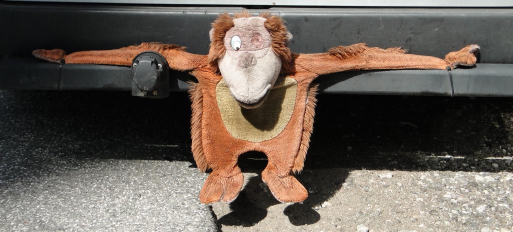 Der arme Affe - verkümmert er doch an einer Stossstange, aufgenommen zwischen HafenCity und Speicherstadt