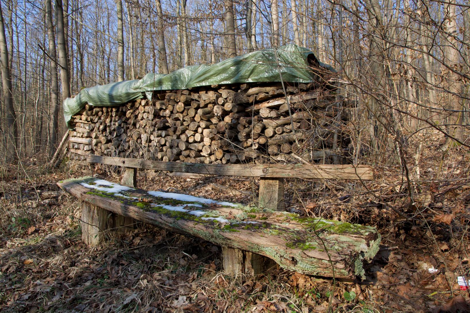 Der Odenwald und seine Realitäten