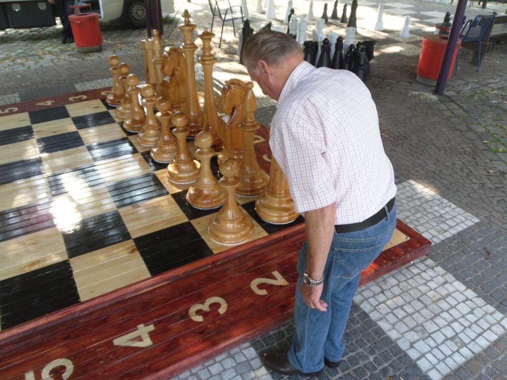 Meister Hans, ein treuer Anhänger unseres Schachclubs, begutachtet die neue Figurenwelt ...
