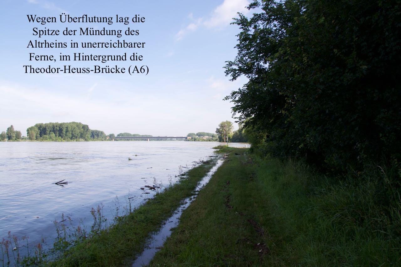 DSC_1566